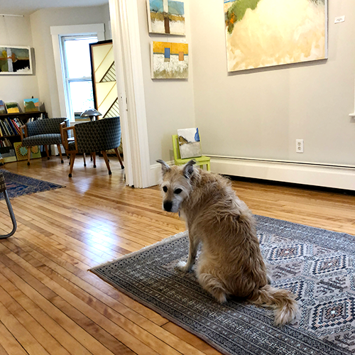 Lucy, the mascot, welcomes you to visit the Tim Beavis Studio.